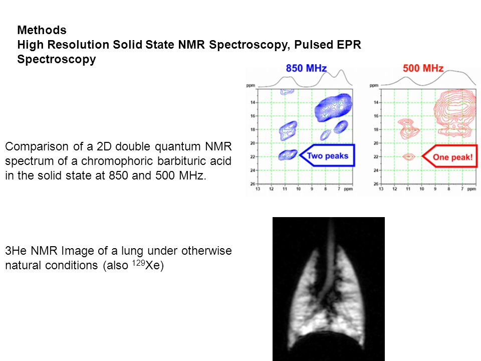 Methods High Resolution Solid State NMR Spectroscopy, Pulsed EPR Spectroscopy.