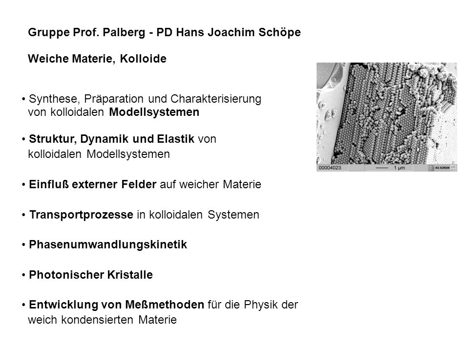 Gruppe Prof. Palberg - PD Hans Joachim Schöpe