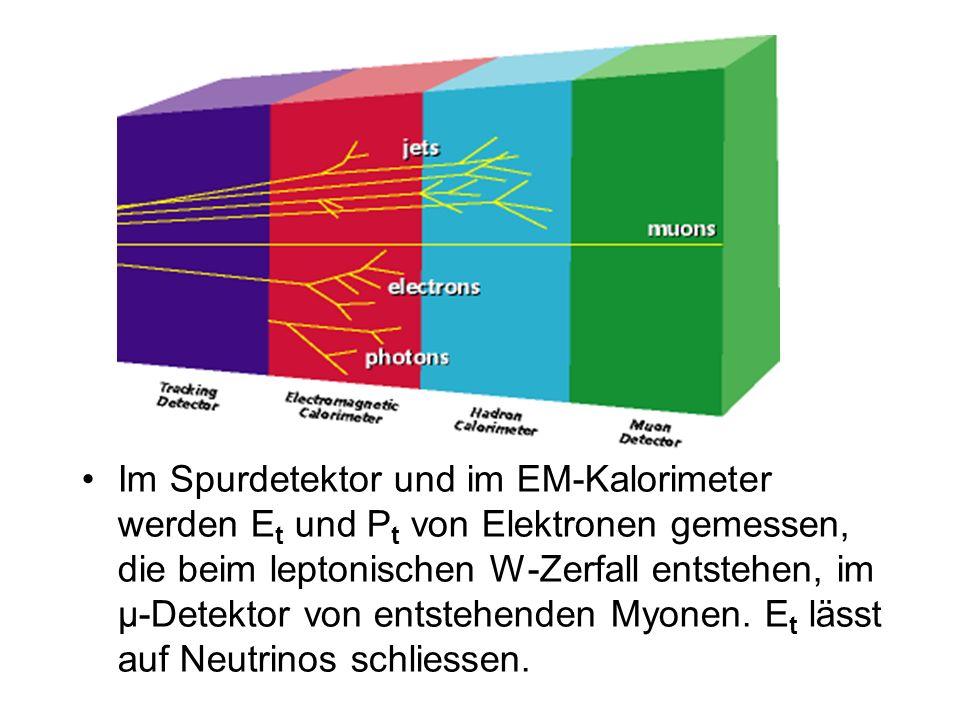 Im Spurdetektor und im EM-Kalorimeter werden Et und Pt von Elektronen gemessen, die beim leptonischen W-Zerfall entstehen, im µ-Detektor von entstehenden Myonen.