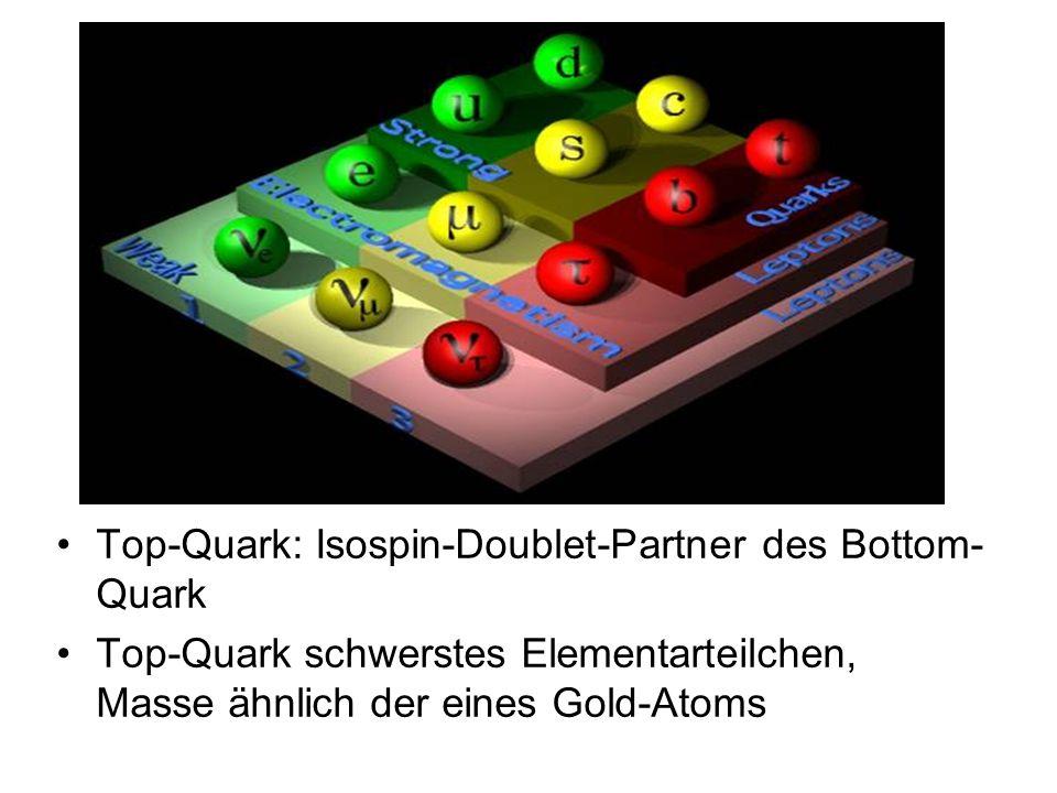 Top-Quark: Isospin-Doublet-Partner des Bottom-Quark