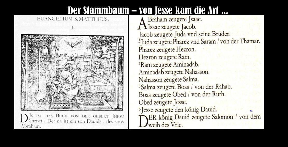 Der Stammbaum – von Jesse kam die Art ...