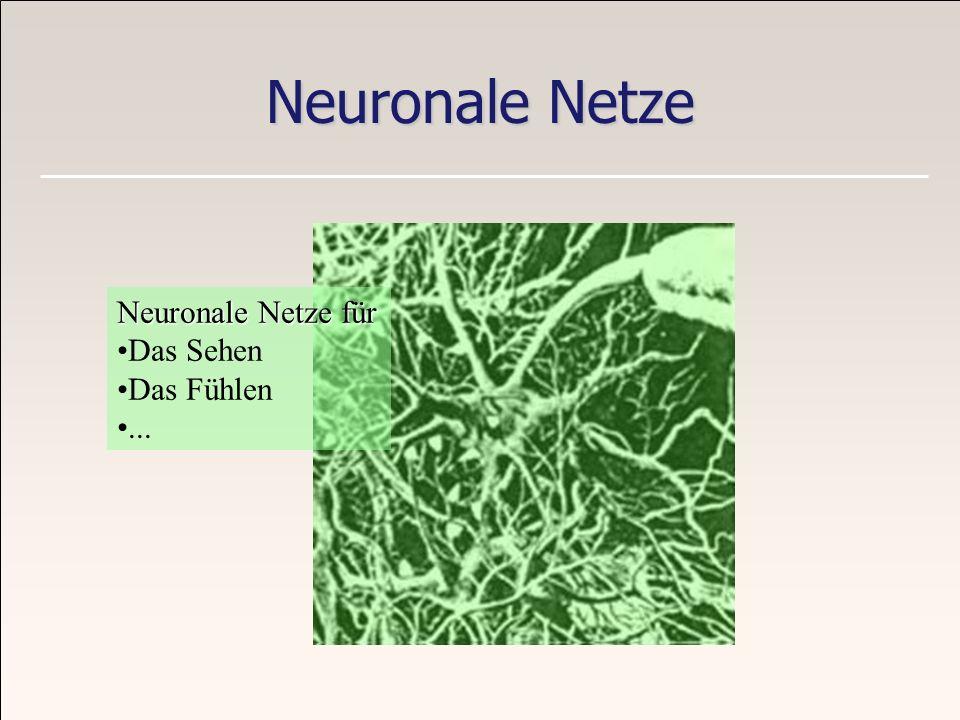Neuronale Netze Neuronale Netze für Das Sehen Das Fühlen ...