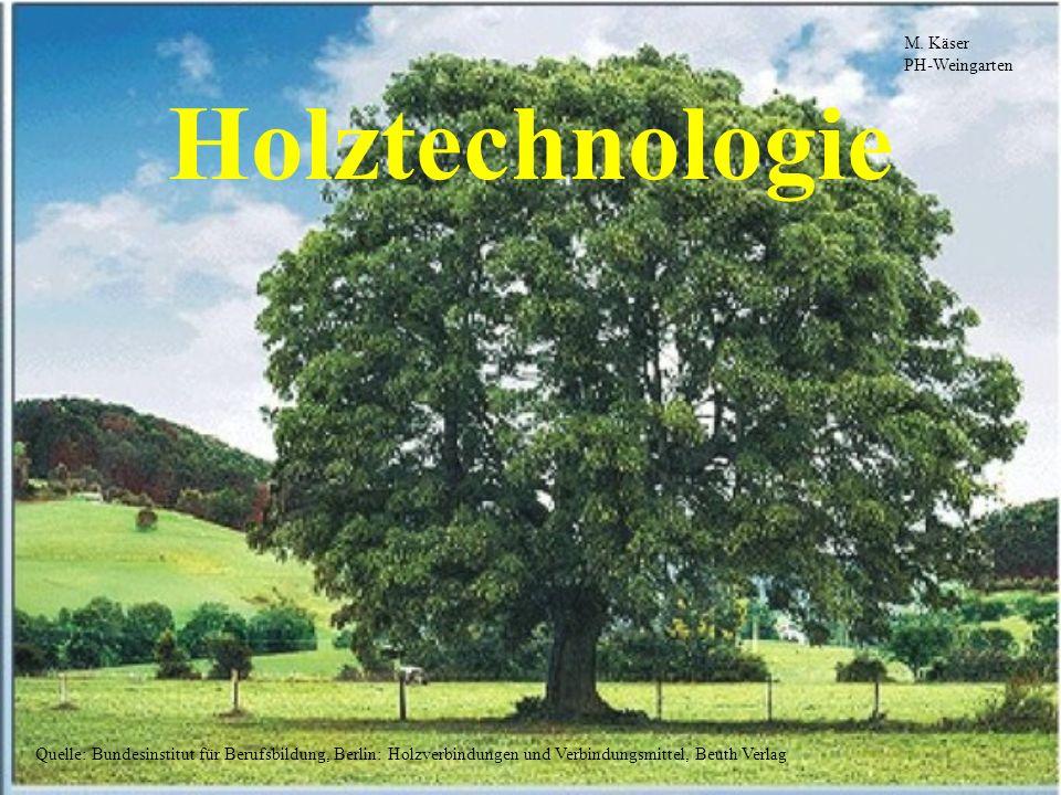 Holztechnologie M. Käser PH-Weingarten