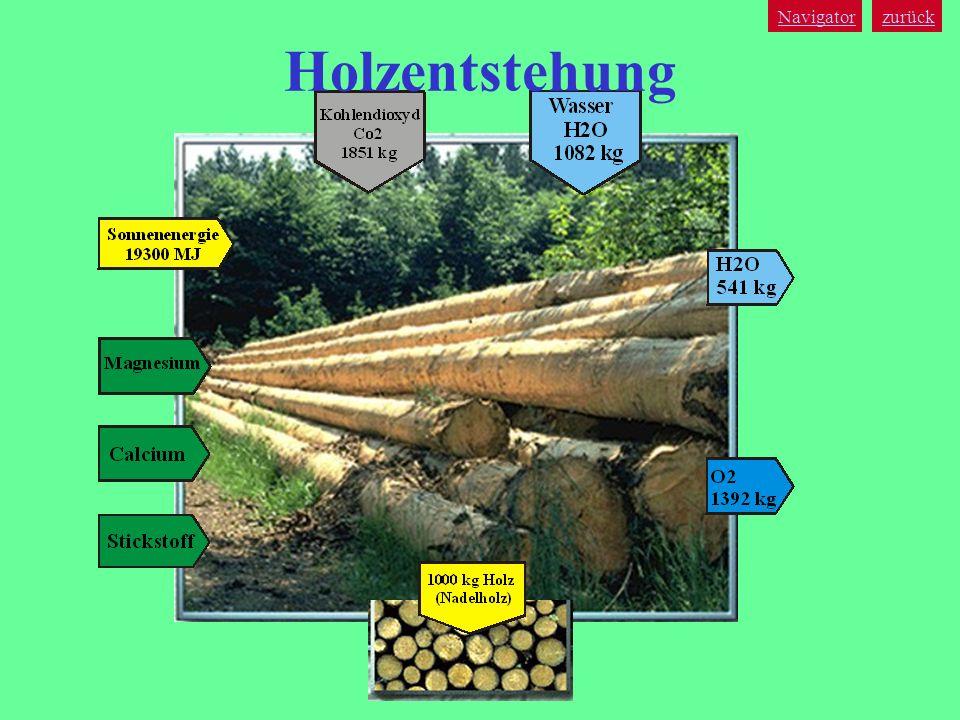 Navigator zurück Holzentstehung