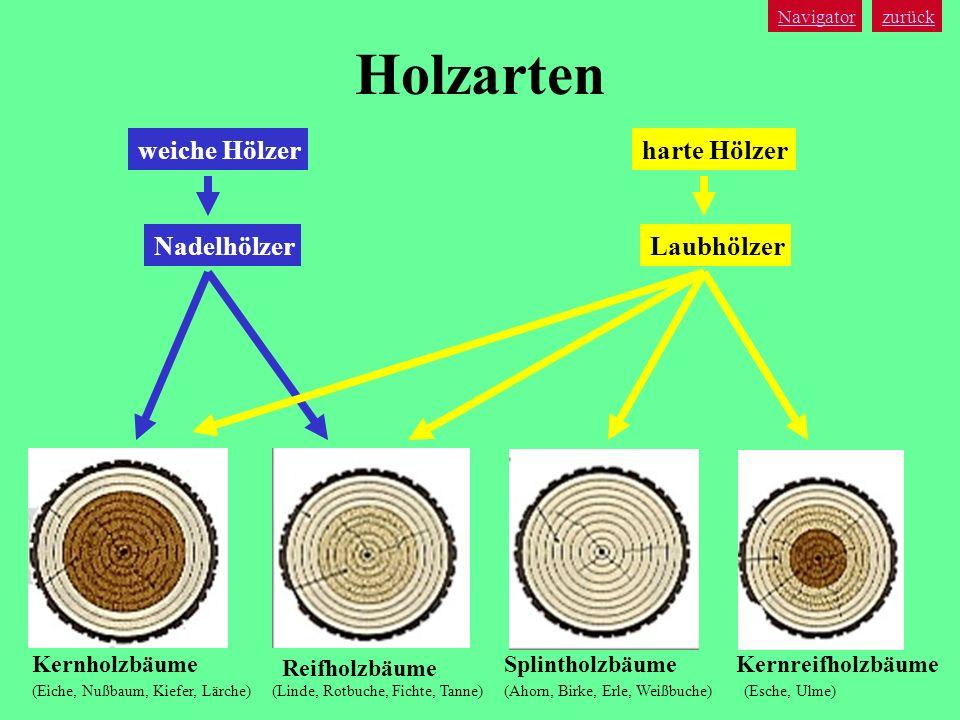 Holzarten weiche Hölzer harte Hölzer Nadelhölzer Laubhölzer