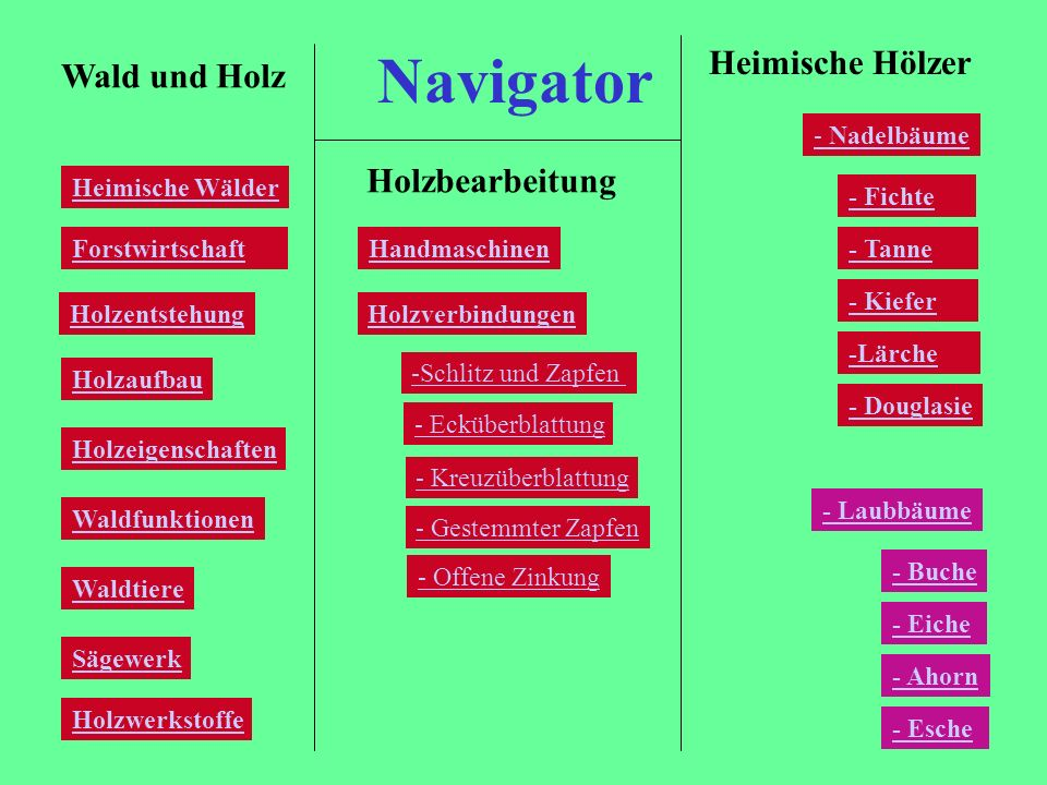 Navigator Heimische Hölzer Wald und Holz Holzbearbeitung - Nadelbäume
