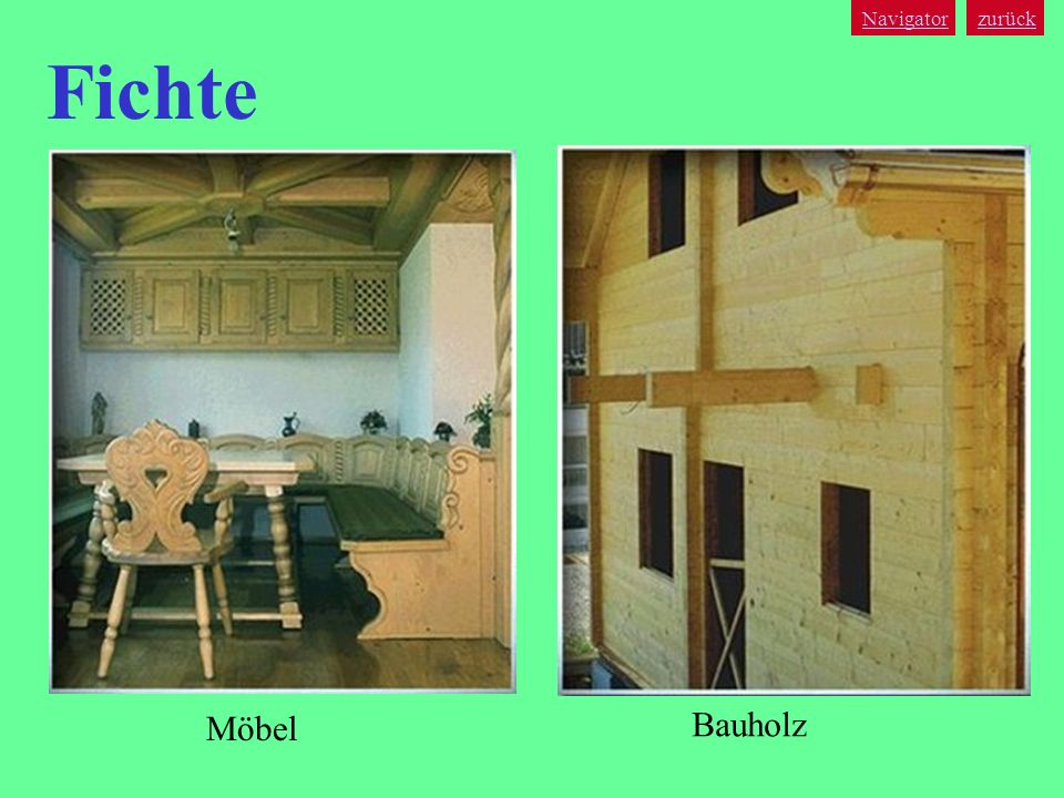 Navigator zurück Fichte Möbel Bauholz