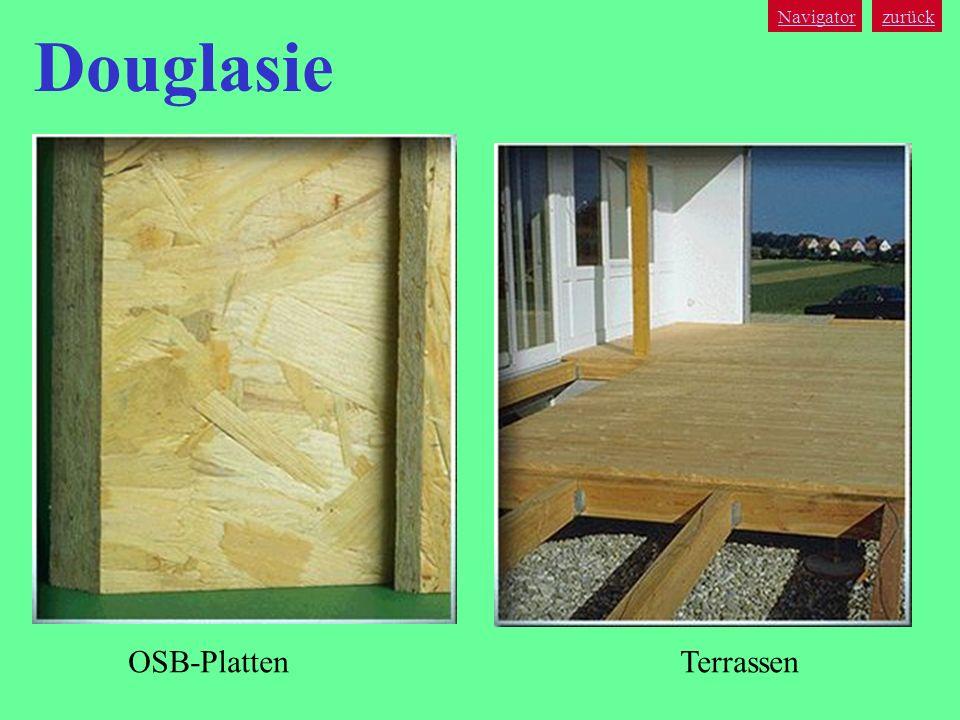 Navigator zurück Douglasie OSB-Platten Terrassen