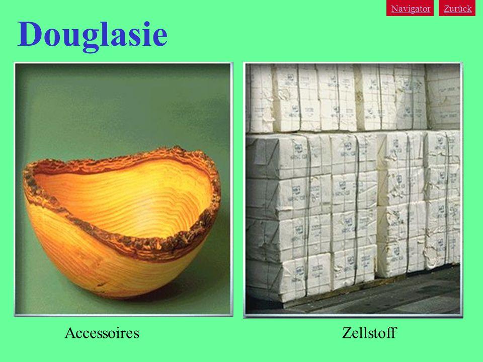 Navigator Zurück Douglasie Accessoires Zellstoff