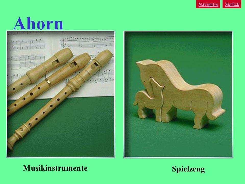 Navigator Zurück Ahorn Musikinstrumente Spielzeug