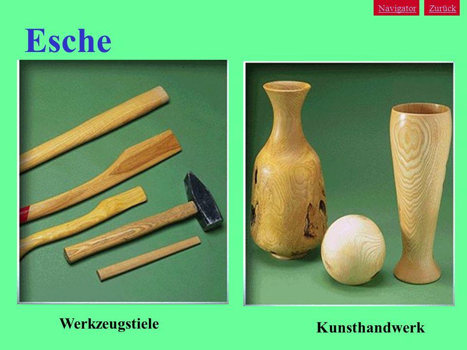 Navigator Zurück Esche Werkzeugstiele Kunsthandwerk