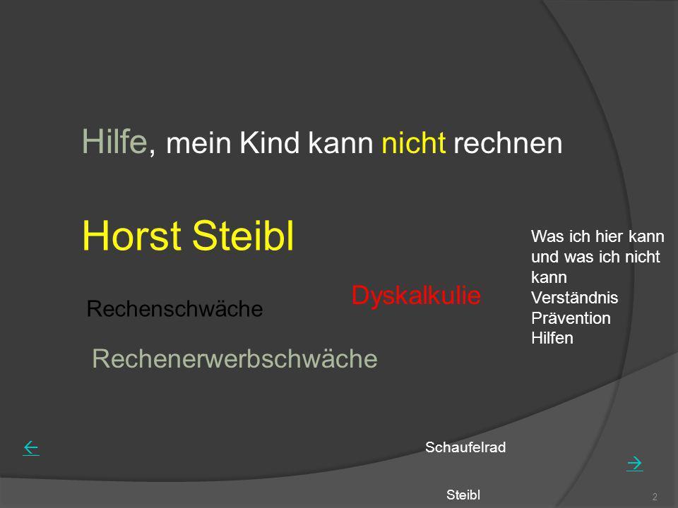Horst Steibl Hilfe, mein Kind kann nicht rechnen Dyskalkulie