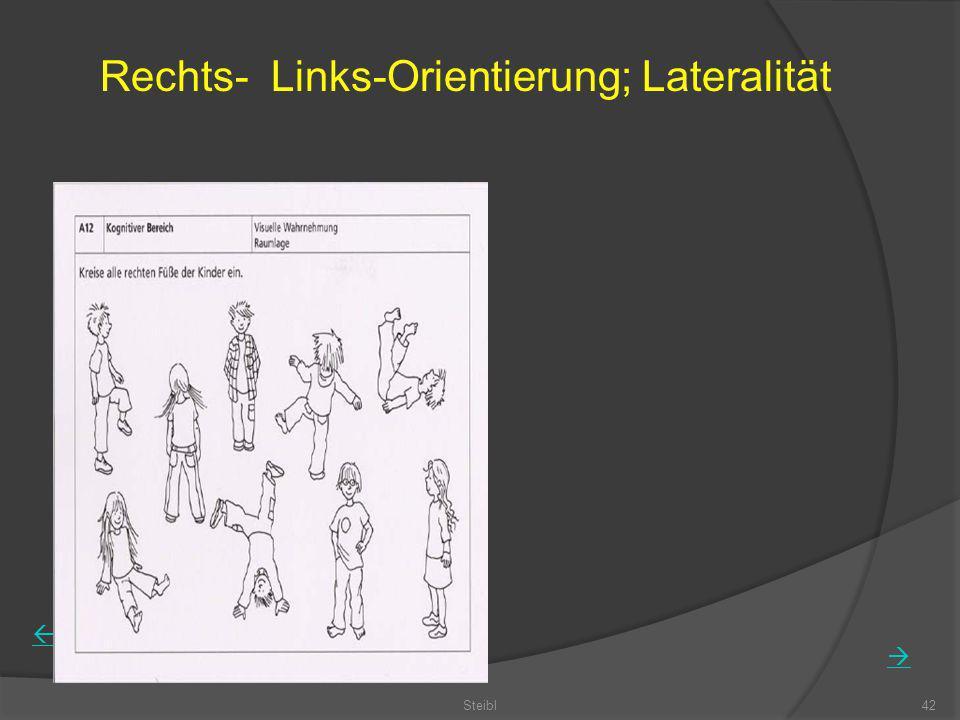 Rechts- Links-Orientierung; Lateralität