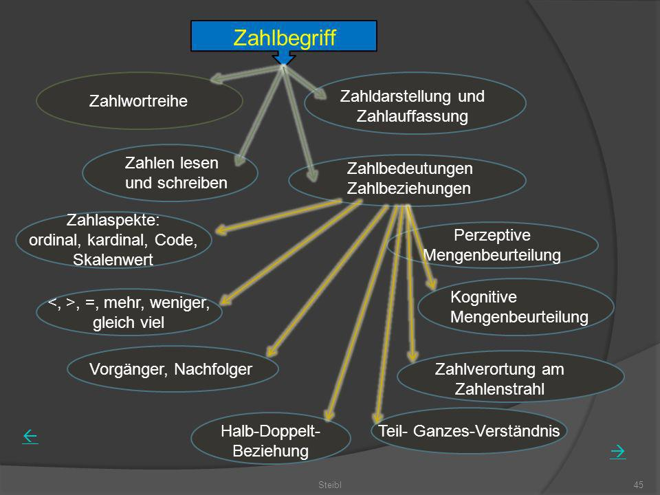 Zahlbegriff Zahldarstellung und Zahlauffassung Zahlwortreihe