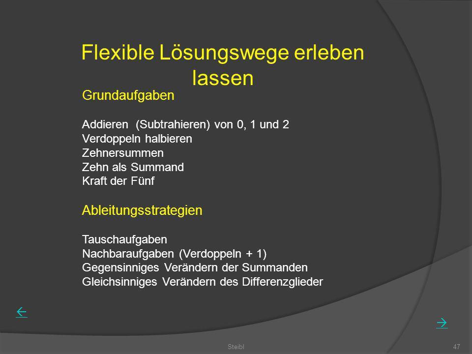 Flexible Lösungswege erleben lassen