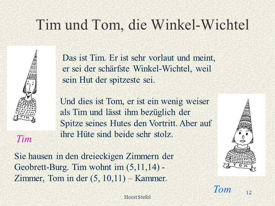 Tim und Tom, die Winkel-Wichtel