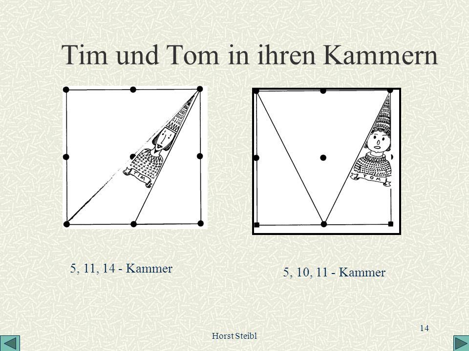 Tim und Tom in ihren Kammern