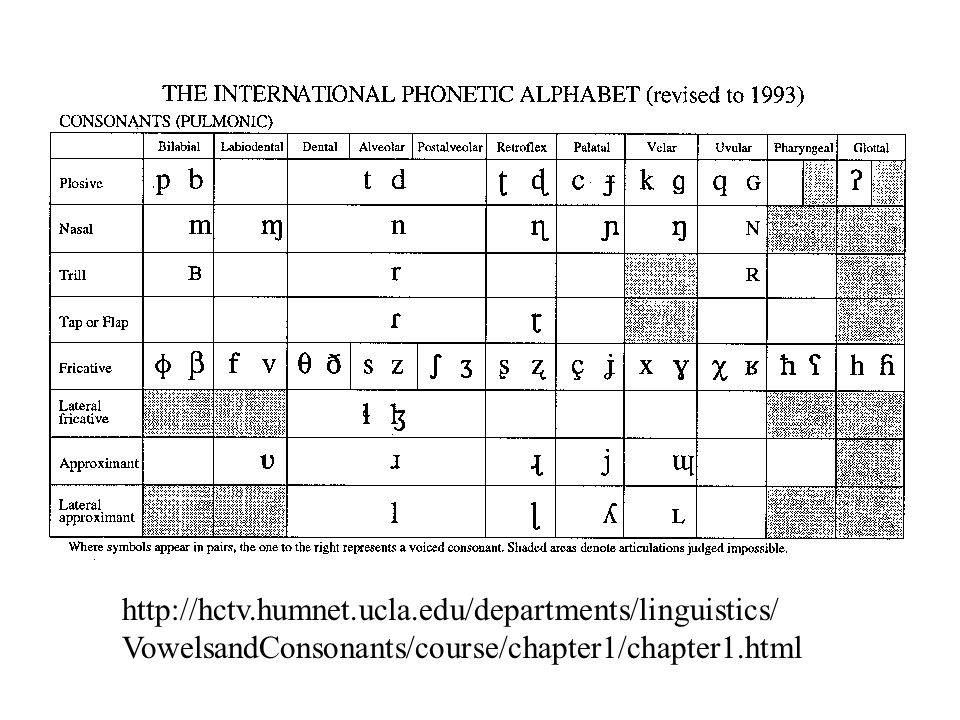 Oberste Zeile in der Tabelle listet die Artikulationsstellen auf, WO in den Sprachen der Welt Laute gebildet werden.