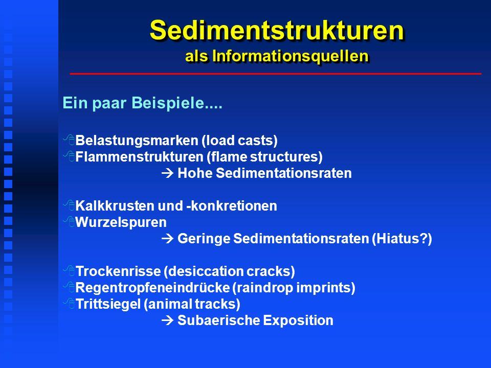 Sedimentstrukturen als Informationsquellen