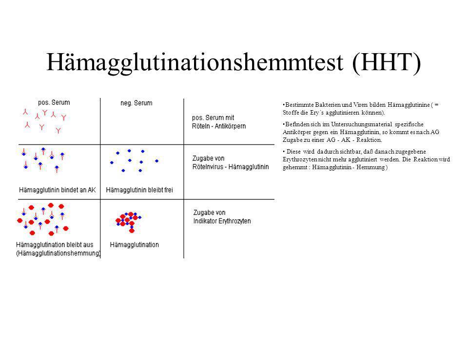 Hämagglutinationshemmtest (HHT)