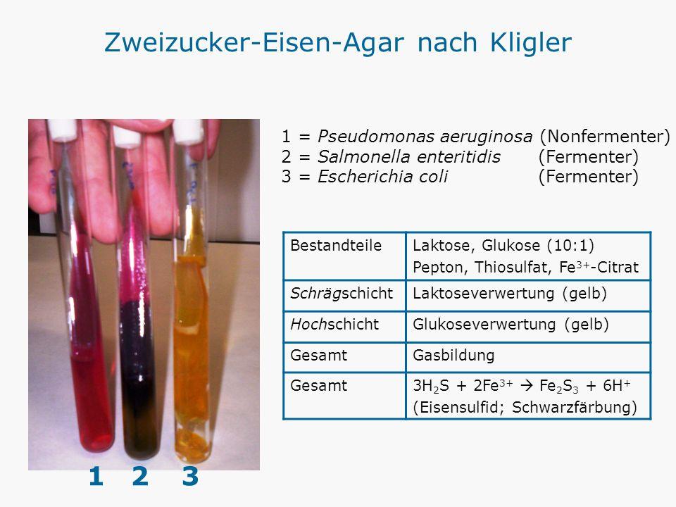 Zweizucker-Eisen-Agar nach Kligler