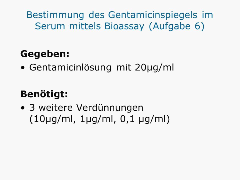 Bestimmung des Gentamicinspiegels im Serum mittels Bioassay (Aufgabe 6)