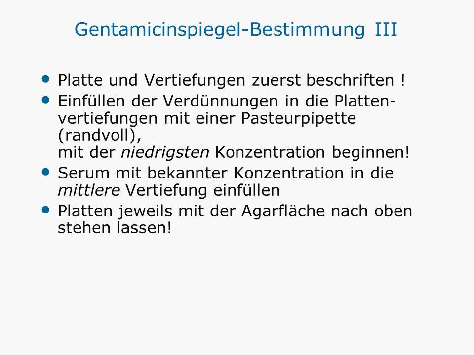 Gentamicinspiegel-Bestimmung III