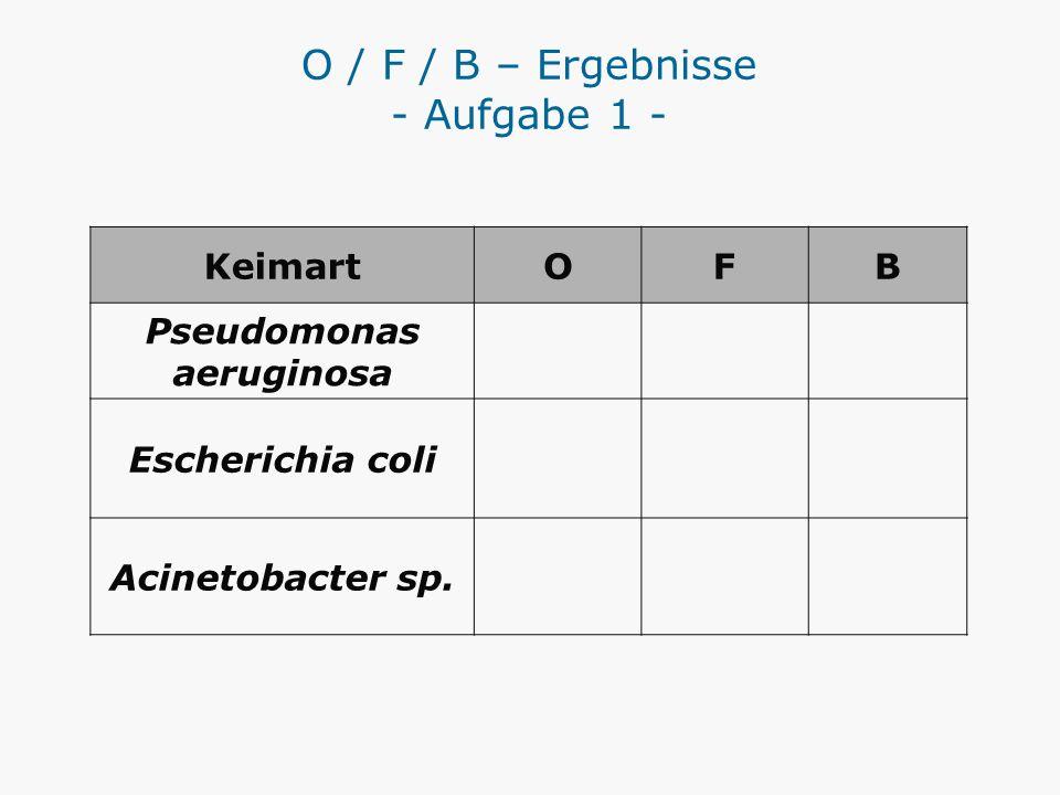 O / F / B – Ergebnisse - Aufgabe 1 -