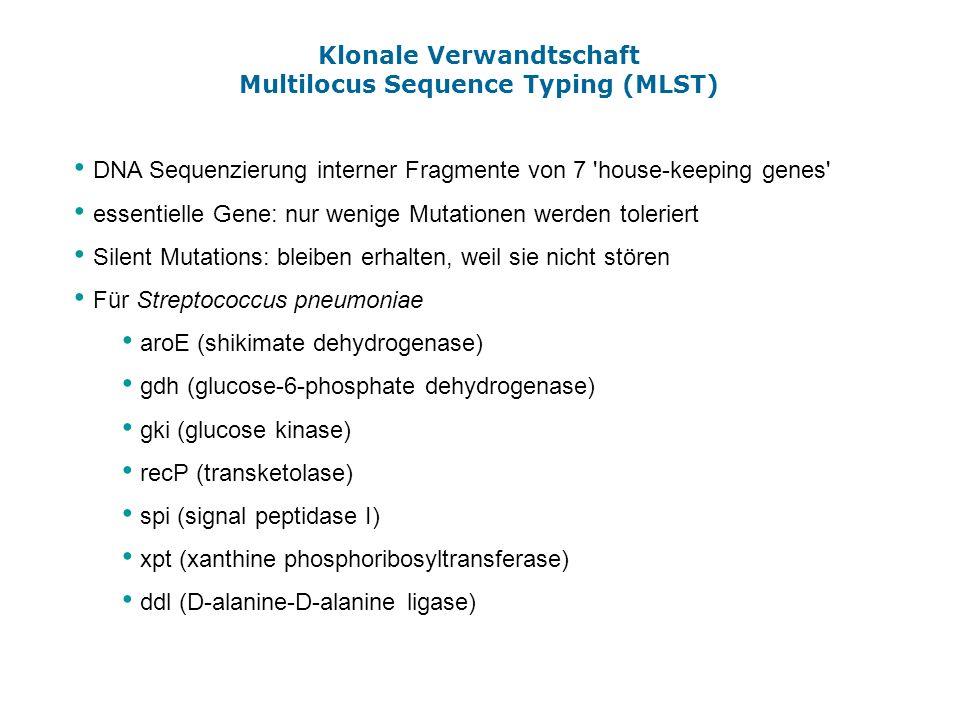 Klonale Verwandtschaft Multilocus Sequence Typing (MLST)