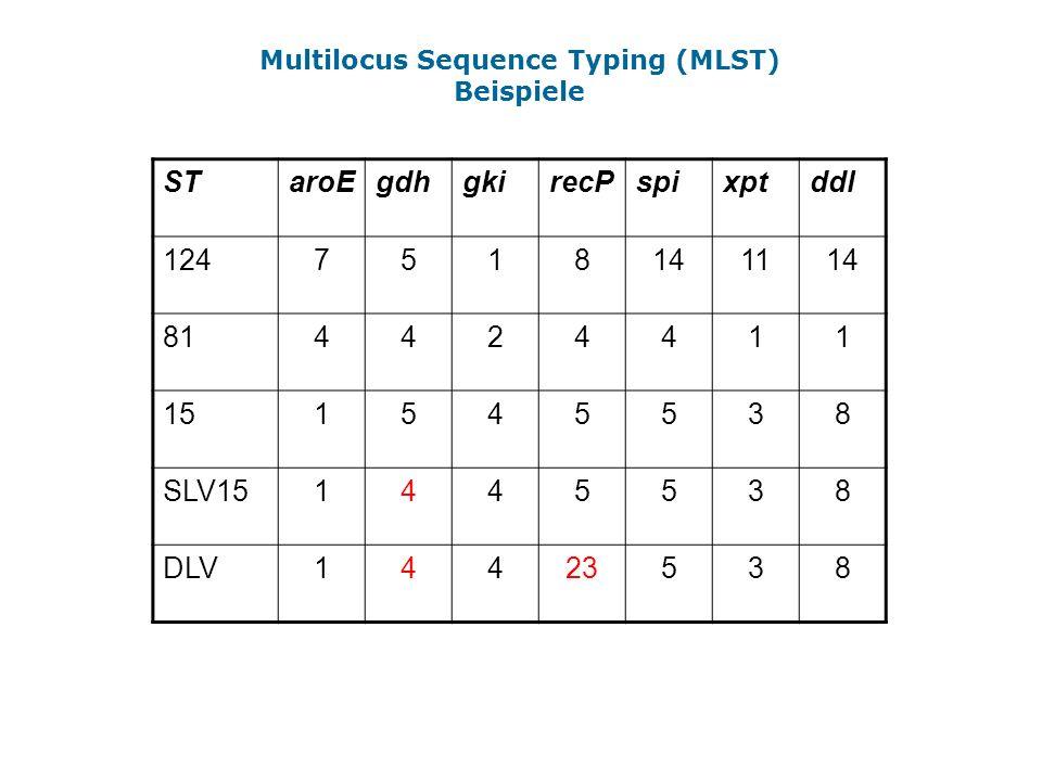Multilocus Sequence Typing (MLST)