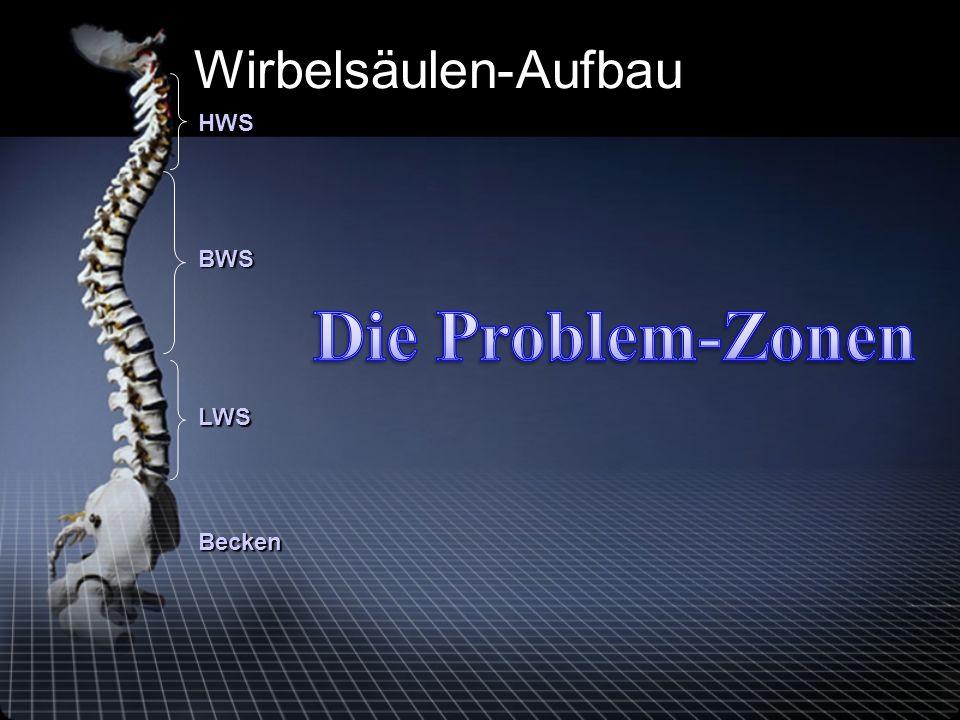 Wirbelsäulen-Aufbau HWS BWS Die Problem-Zonen LWS Becken