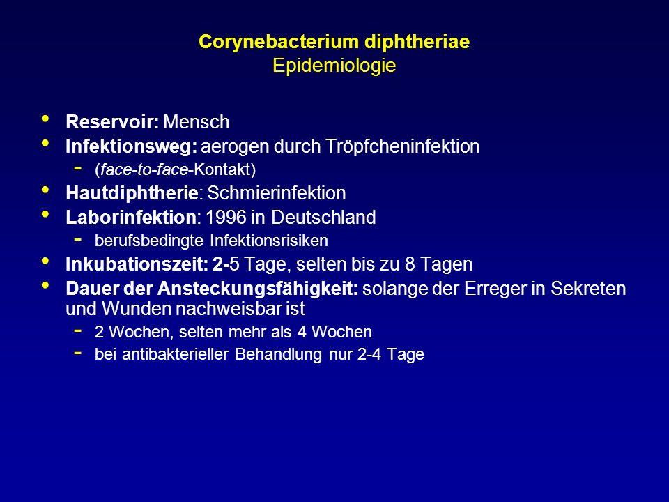 Corynebacterium diphtheriae Epidemiologie