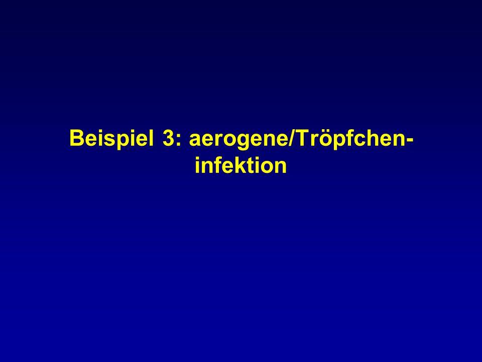 Beispiel 3: aerogene/Tröpfchen-infektion