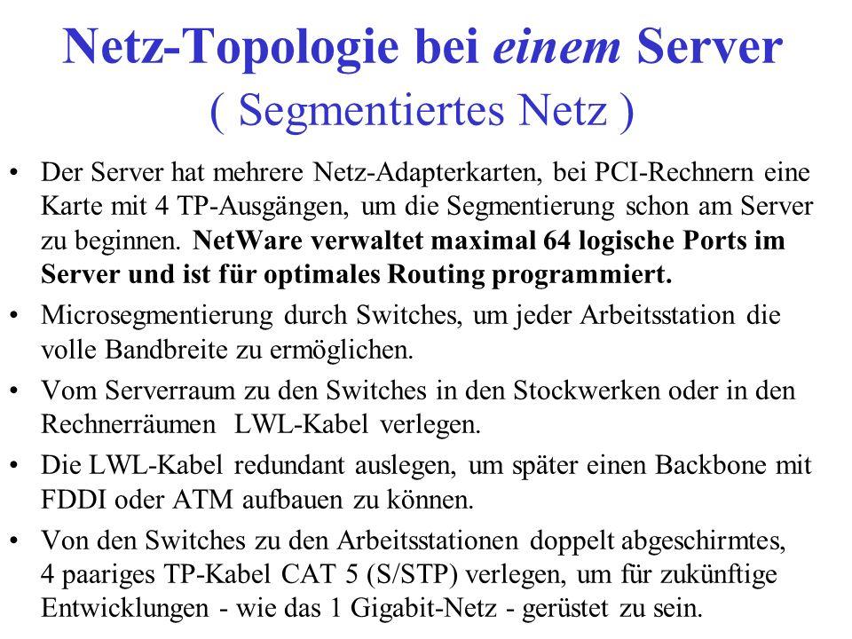 Netz-Topologie bei einem Server ( Segmentiertes Netz )