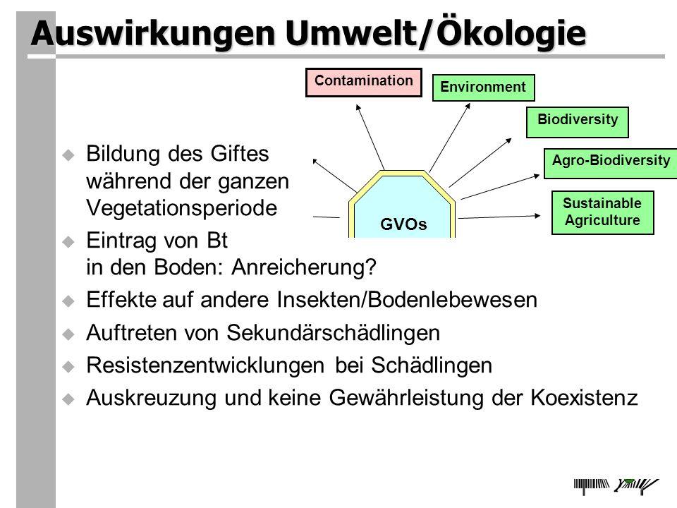Auswirkungen Umwelt/Ökologie