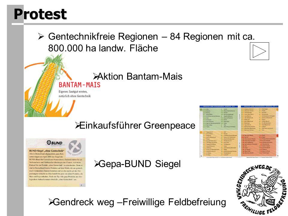 Protest Gentechnikfreie Regionen – 84 Regionen mit ca. 800.000 ha landw. Fläche. Aktion Bantam-Mais.