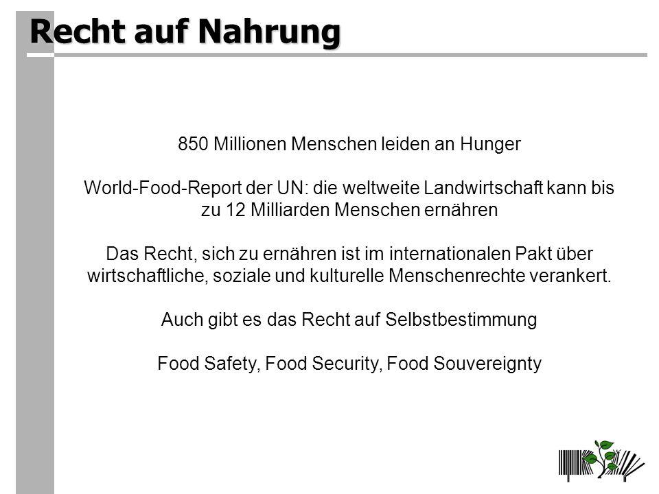 Recht auf Nahrung 850 Millionen Menschen leiden an Hunger