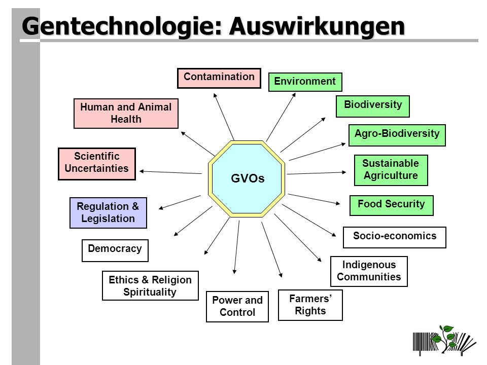 Gentechnologie: Auswirkungen