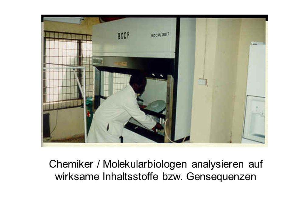 Chemiker / Molekularbiologen analysieren auf wirksame Inhaltsstoffe bzw. Gensequenzen