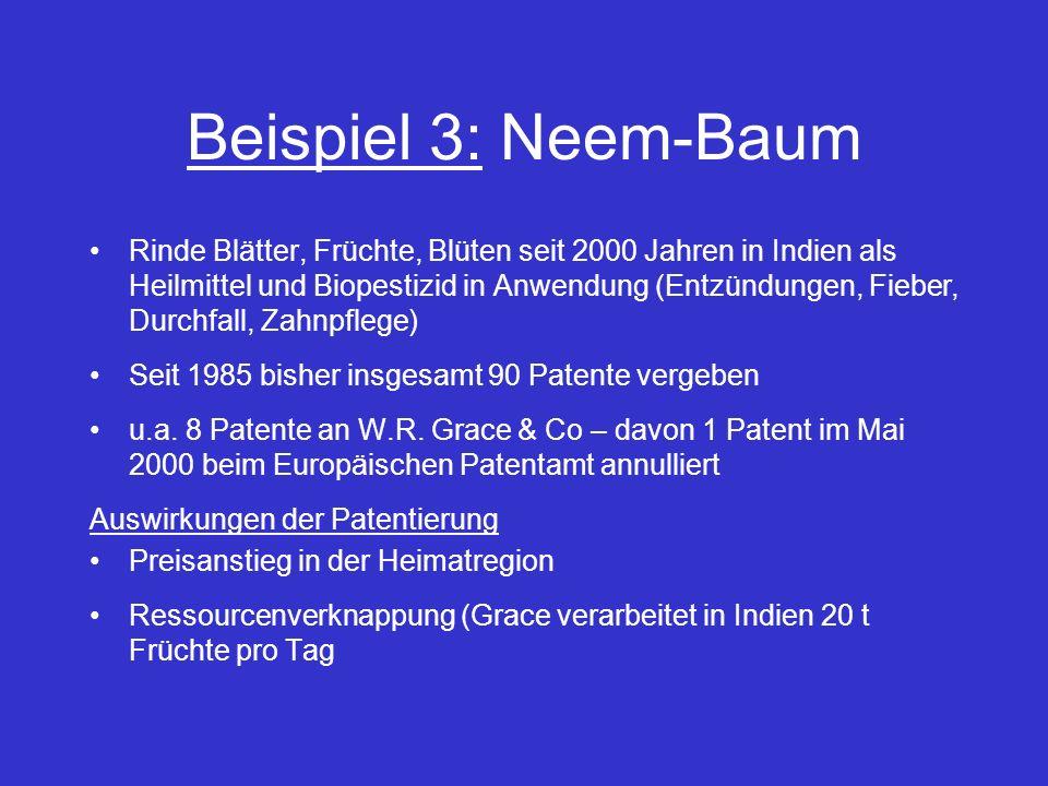 Beispiel 3: Neem-Baum