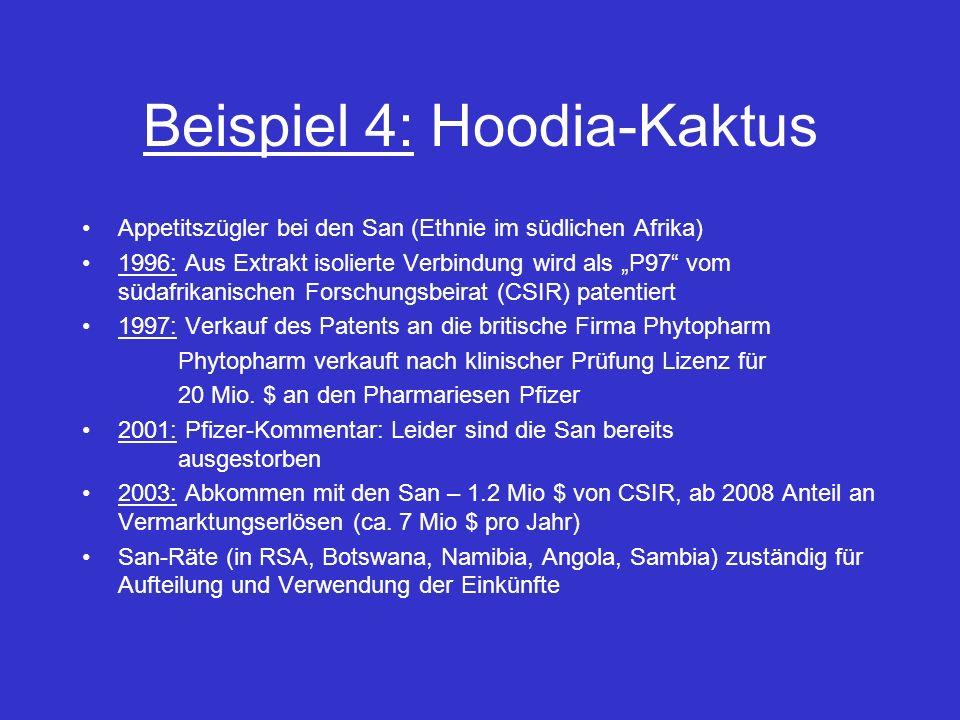 Beispiel 4: Hoodia-Kaktus