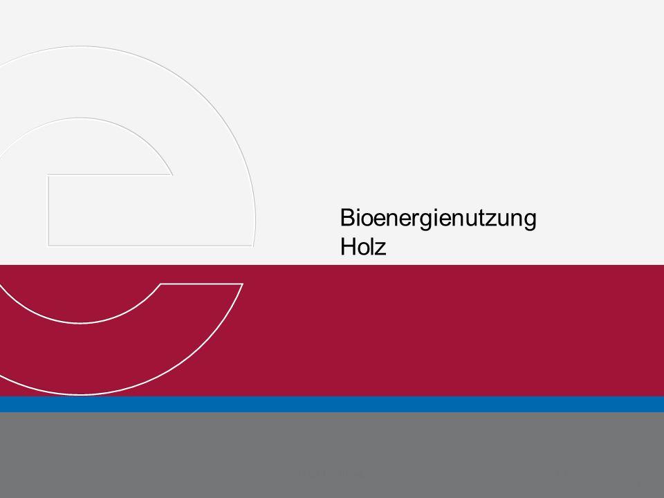 Bioenergienutzung Holz Michael Metternich Martin Weyand