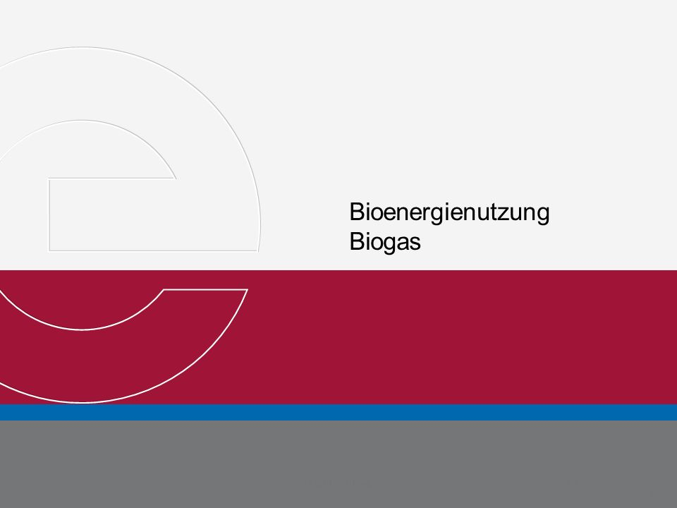 Bioenergienutzung Biogas Michael Metternich Martin Weyand