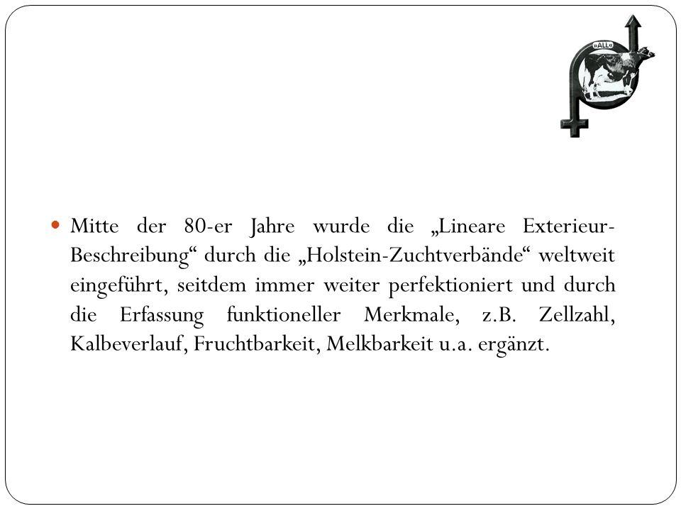 """Mitte der 80-er Jahre wurde die """"Lineare Exterieur- Beschreibung durch die """"Holstein-Zuchtverbände weltweit eingeführt, seitdem immer weiter perfektioniert und durch die Erfassung funktioneller Merkmale, z.B."""
