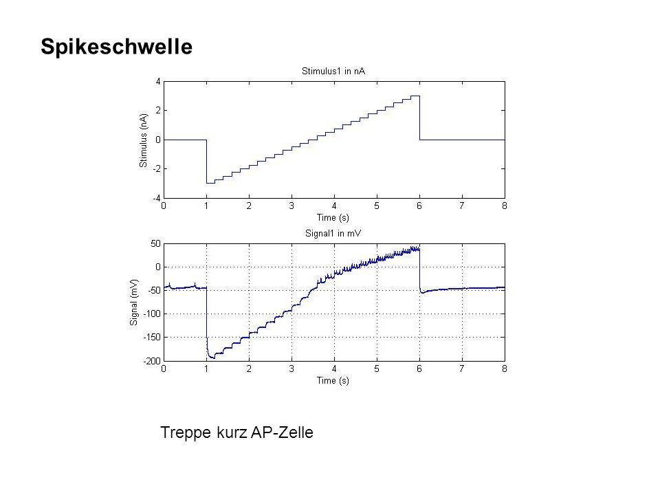 Spikeschwelle Treppe kurz AP-Zelle