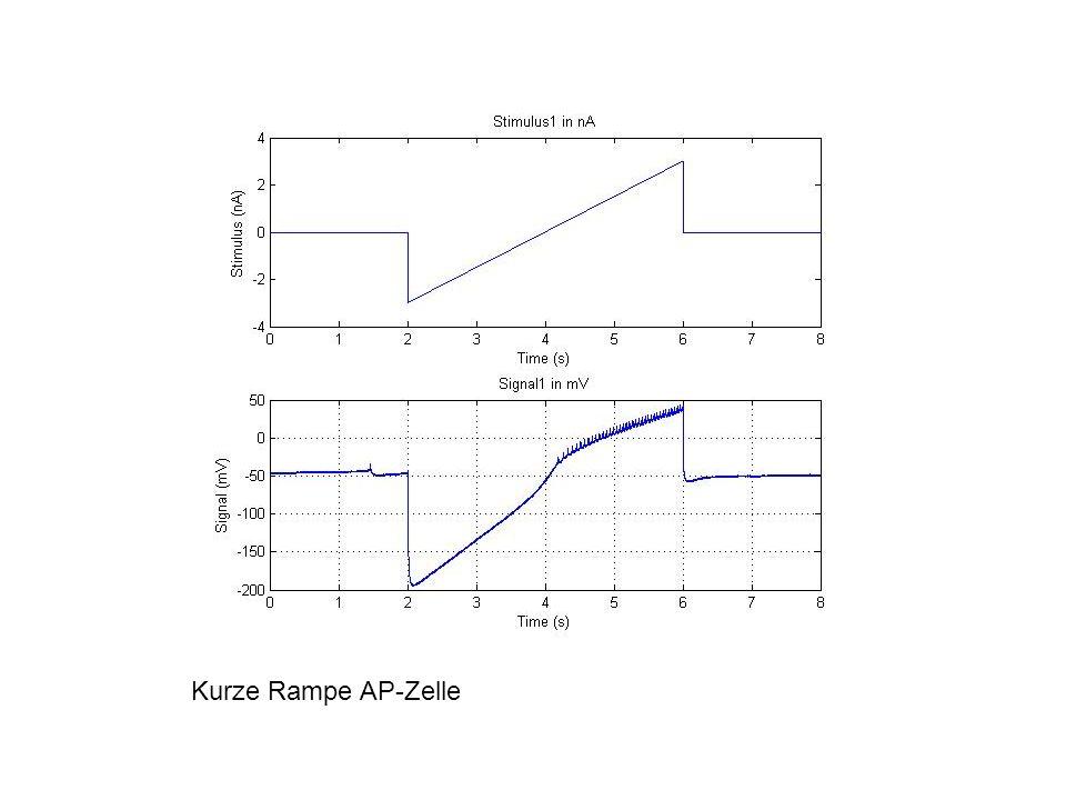 Kurze Rampe AP-Zelle