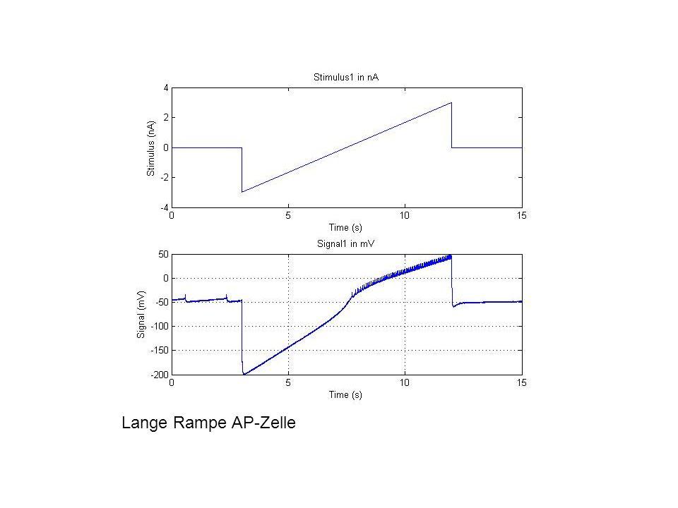Lange Rampe AP-Zelle