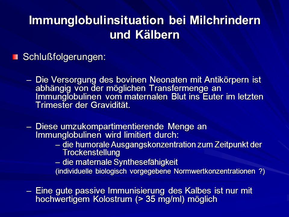 Immunglobulinsituation bei Milchrindern und Kälbern