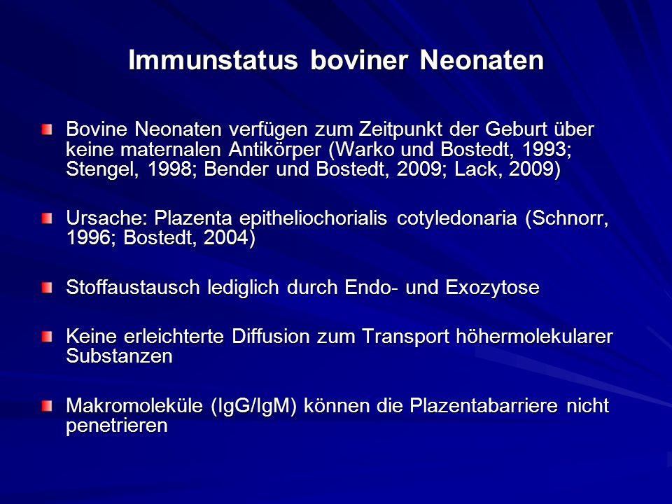 Immunstatus boviner Neonaten