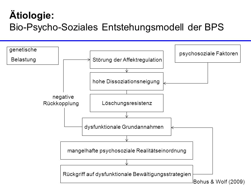 Bio-Psycho-Soziales Entstehungsmodell der BPS